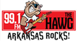 99.1 FM The Hawg